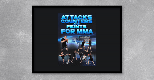 Attacks - Counters and Feints for MMA from Randy Steinke at Kingzbook.com