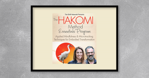 The Hakomi Method Essentials Program Applied Mindfulness & Micre-tracking Teachniques For Embodied Transformation from Kingzbook.com