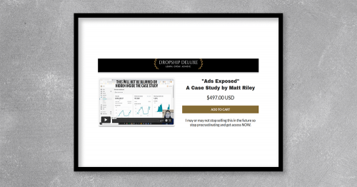 Ads Exposed Case Study by Matt Riley at Kingzbook.com